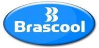 Logo - Brascool